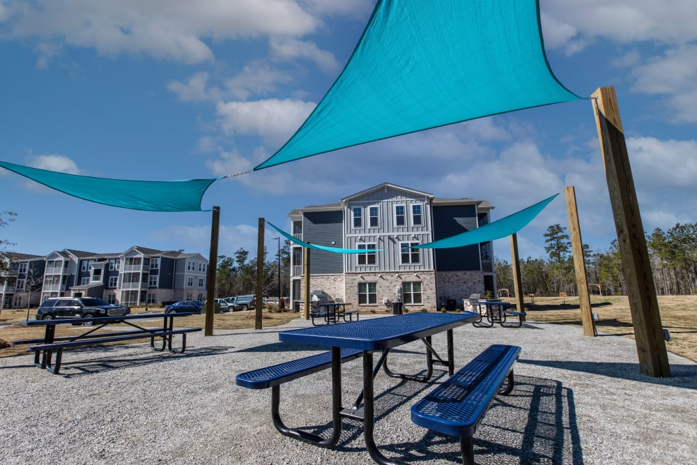 Picnic area at South City Apartments in Summerville, South Carolina
