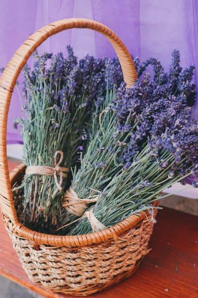 Lavender basket at {{location_name}}