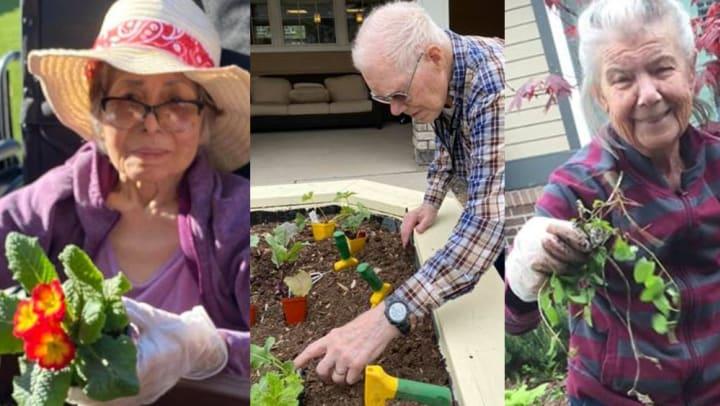 Gardening and Alzheimer