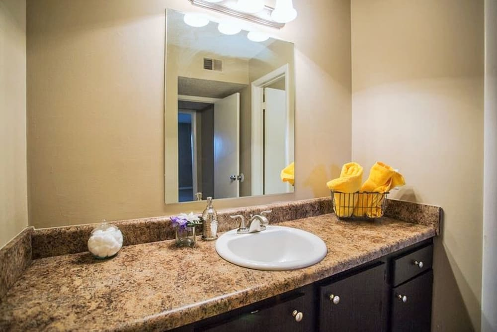 Bright bathroom with plenty of counter space at The Village at Crestview in Madison, Tennessee