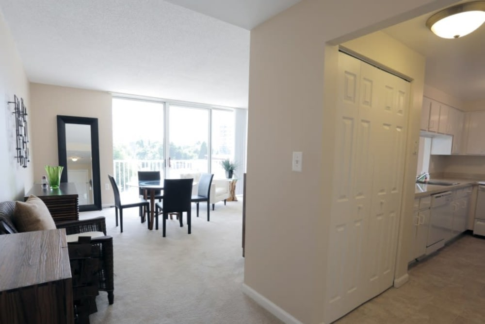 A floor plan with ceiling-to-floor windows and plush carpeting at Westwood Tower Apartments in Bethesda, Maryland