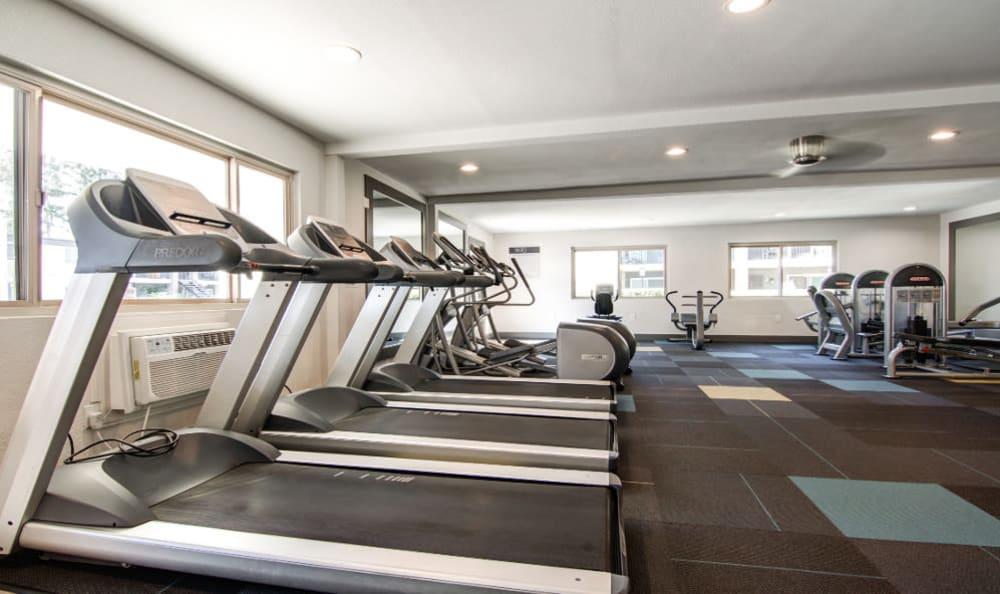 Luxury fitness center at Sofi Poway in Poway, CA
