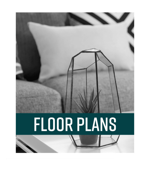 View Floor Plans offered at Blackbird in Redmond, Washington