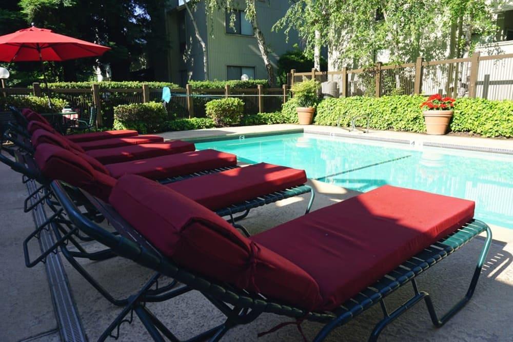 Sparkling pool of Huntcliffe Apartments in Fair Oaks, California