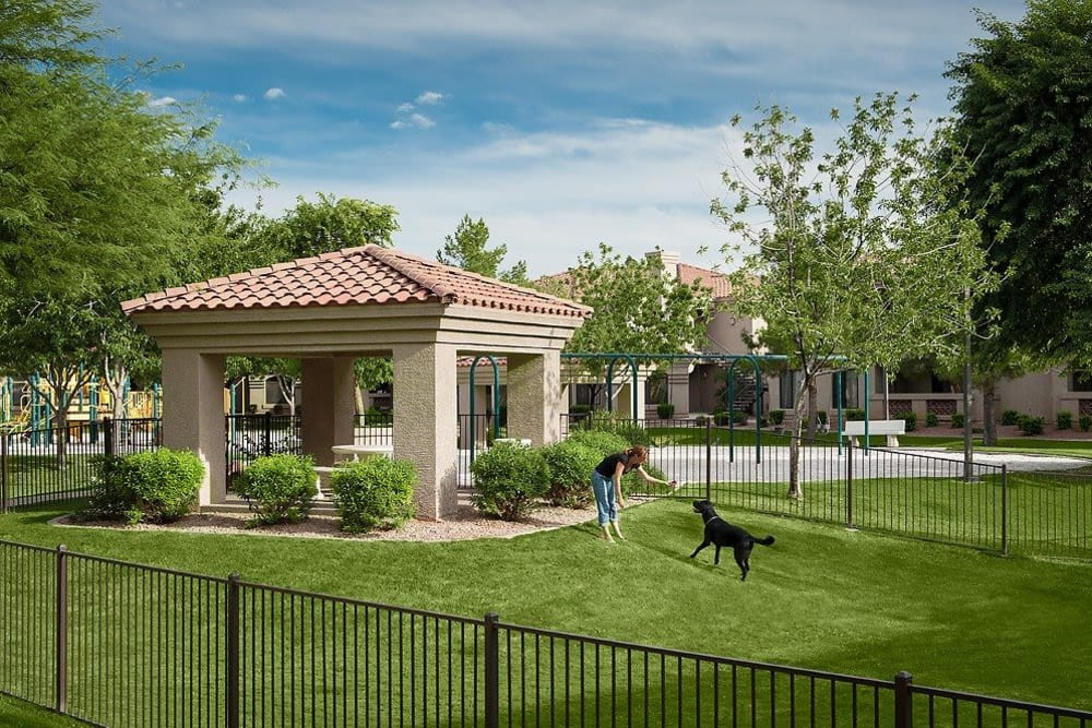 Onsite dog park at San Pedregal in Phoenix, Arizona