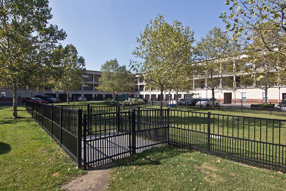 Gated dog park at Easton Commons in Columbus, Ohio