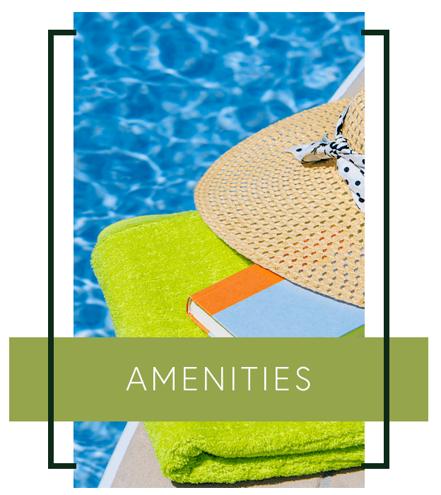 Learn more about the amenities we offer at Seven65 Lofts