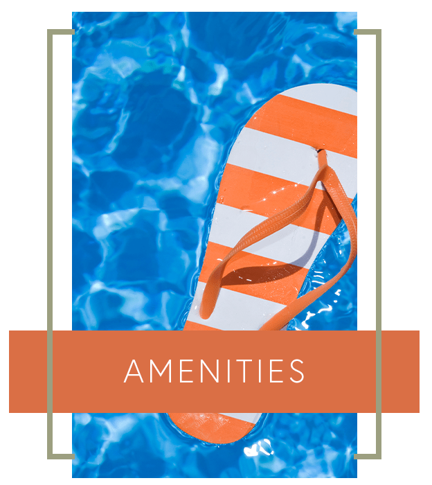 Learn more about the amenities we offer at Meadowbrook Station Apartments