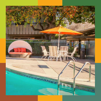 The Shadows Apartments Amenities flipcard