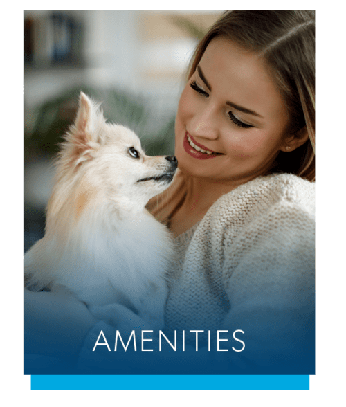 View the amenities at Lake Vista Apartments in Rochester, New York