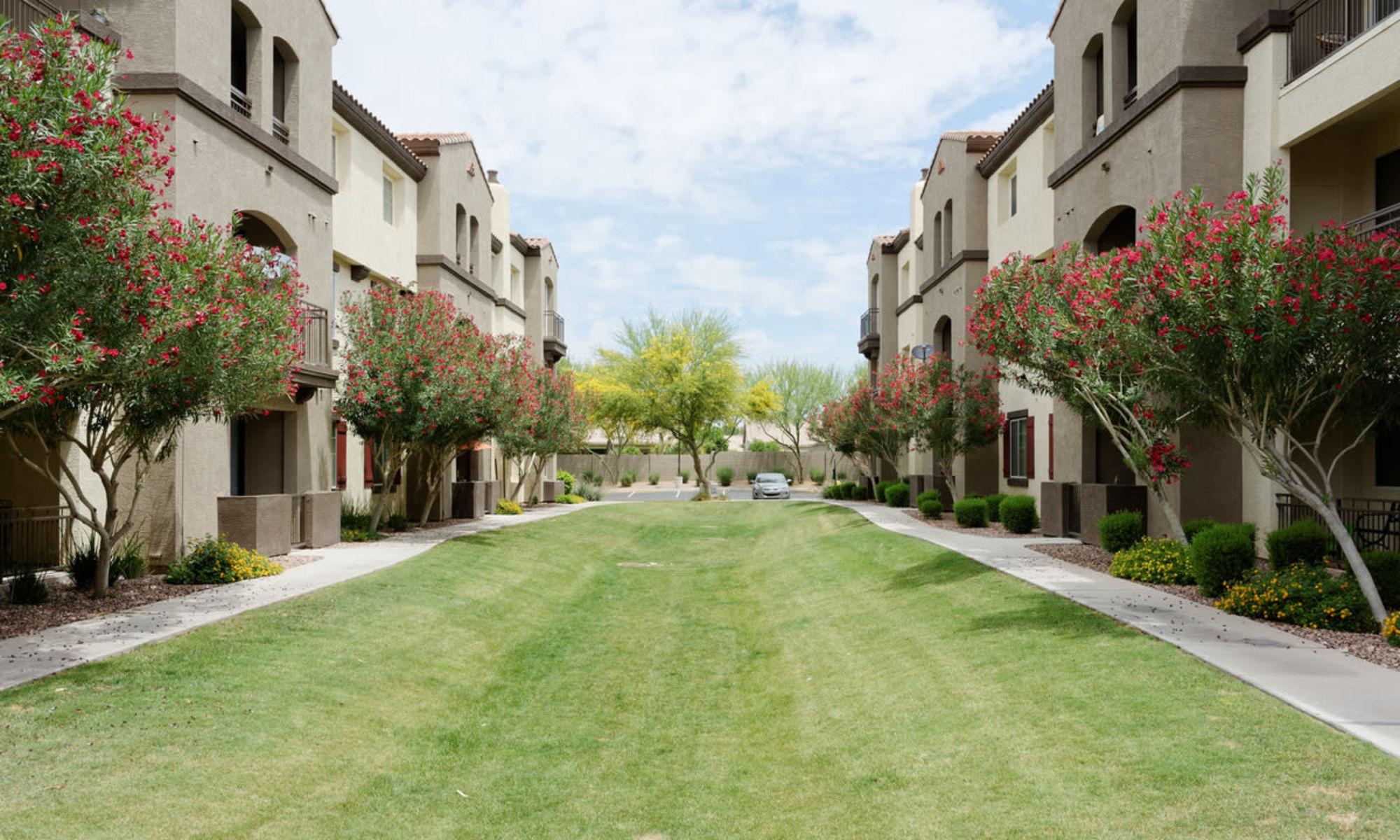 Apartments at Waterford at Peoria in Peoria, Arizona