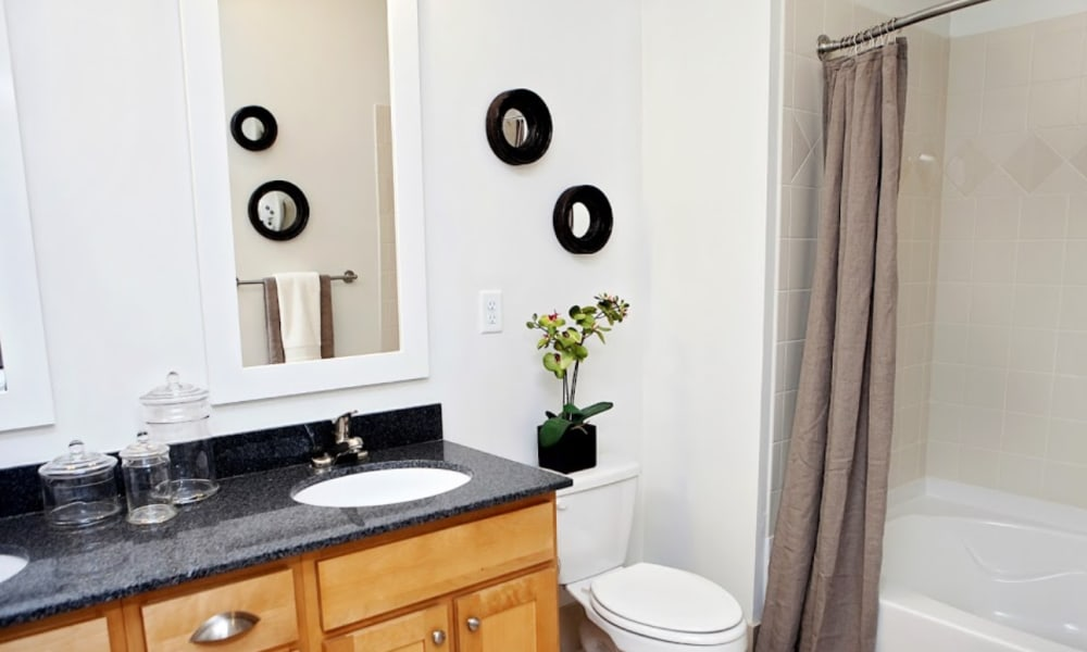 Luxury bathroom at Townhomes at Chapel Watch Village in Chapel Hill, North Carolina