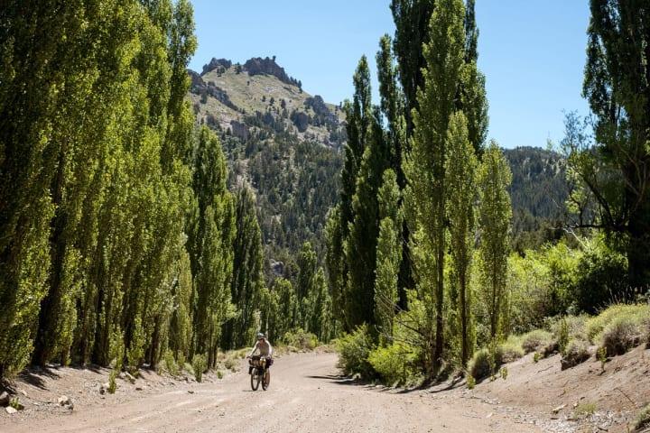Biking on a trail through some trees