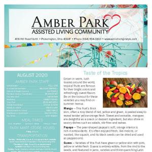 August Amber Park newsletter