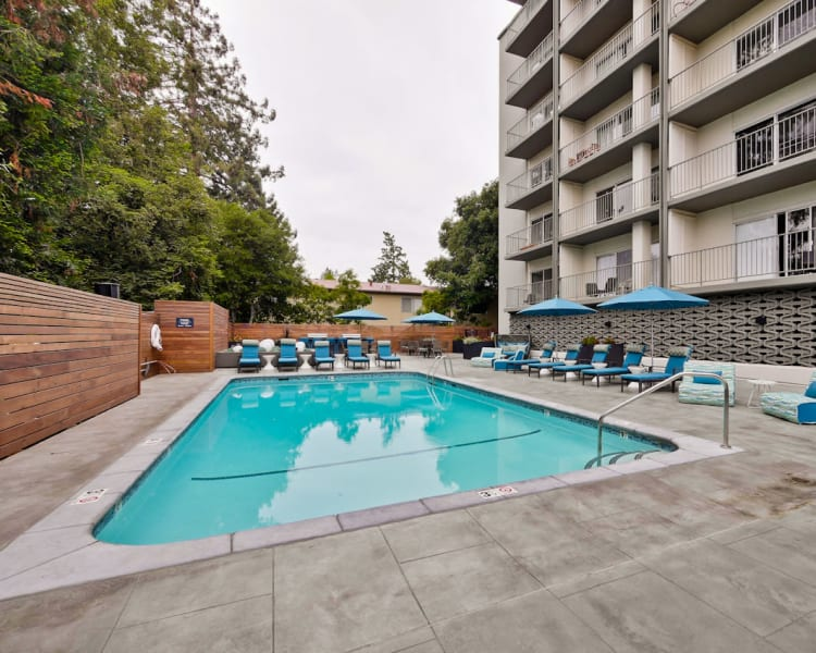 Swimming pool area with mature trees nearby at Mia in Palo Alto, California