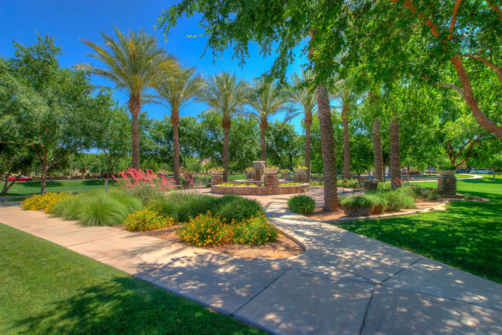 Park near BB Living at Val Vista in Gilbert, Arizona