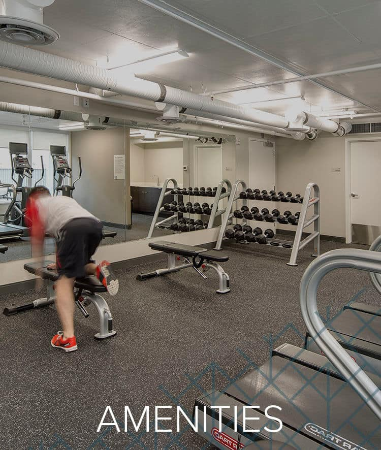 Our Amenities for Fifteen15 in Calgary, AB