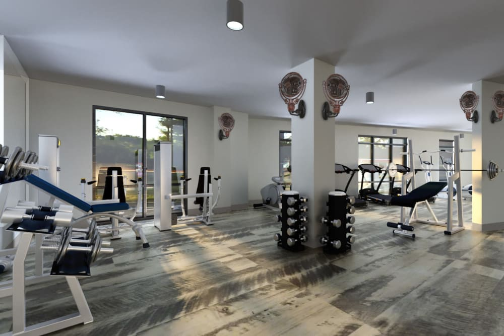 Fitness room at The Jaxon in Jacksonville, Florida