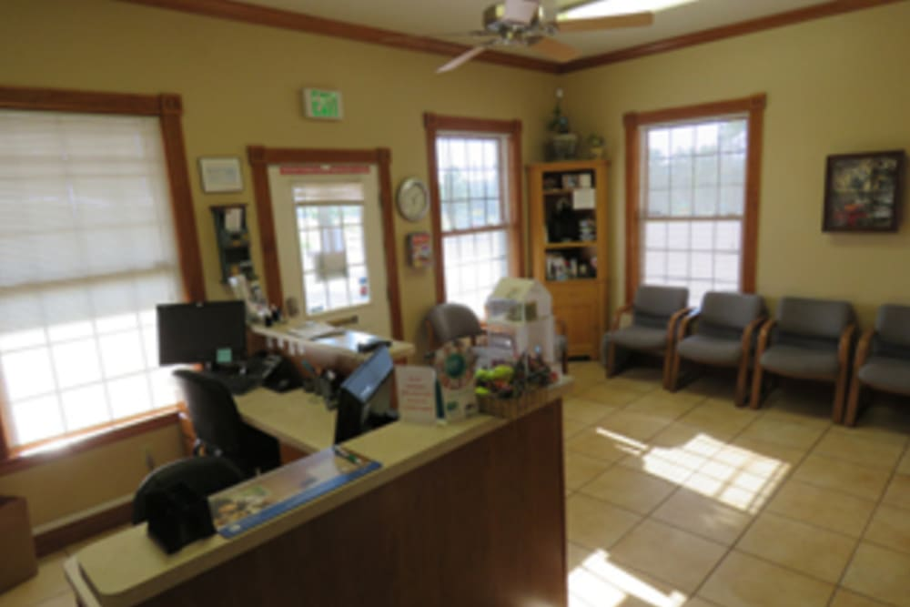 Lobby at Black Forest Veterinary Clinic in Colorado Springs, Colorado