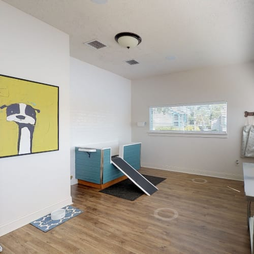 View virtual tour of the pet wash center at Onyx Winter Park in Casselberry, Florida