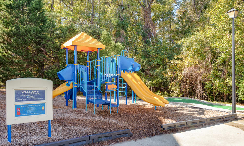 Playground at The Waterway Apartment Homes in Lexington, SC