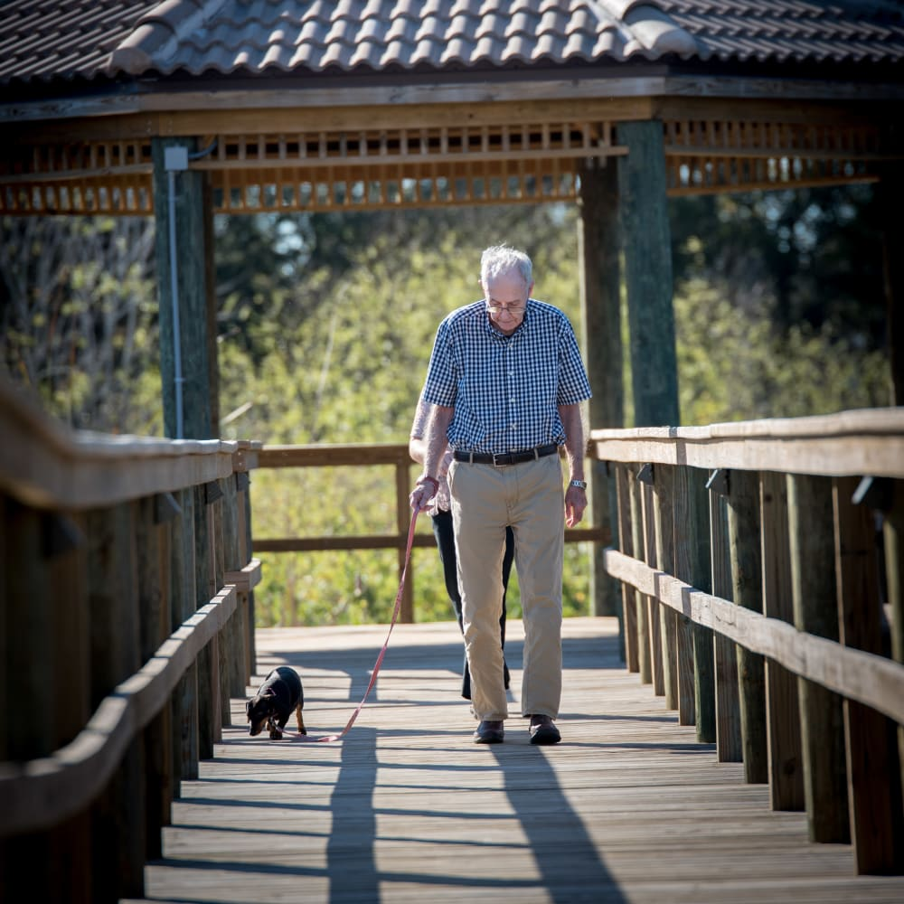 Resident walking his dog at Inspired Living Sugar Land in Sugar Land, Texas.