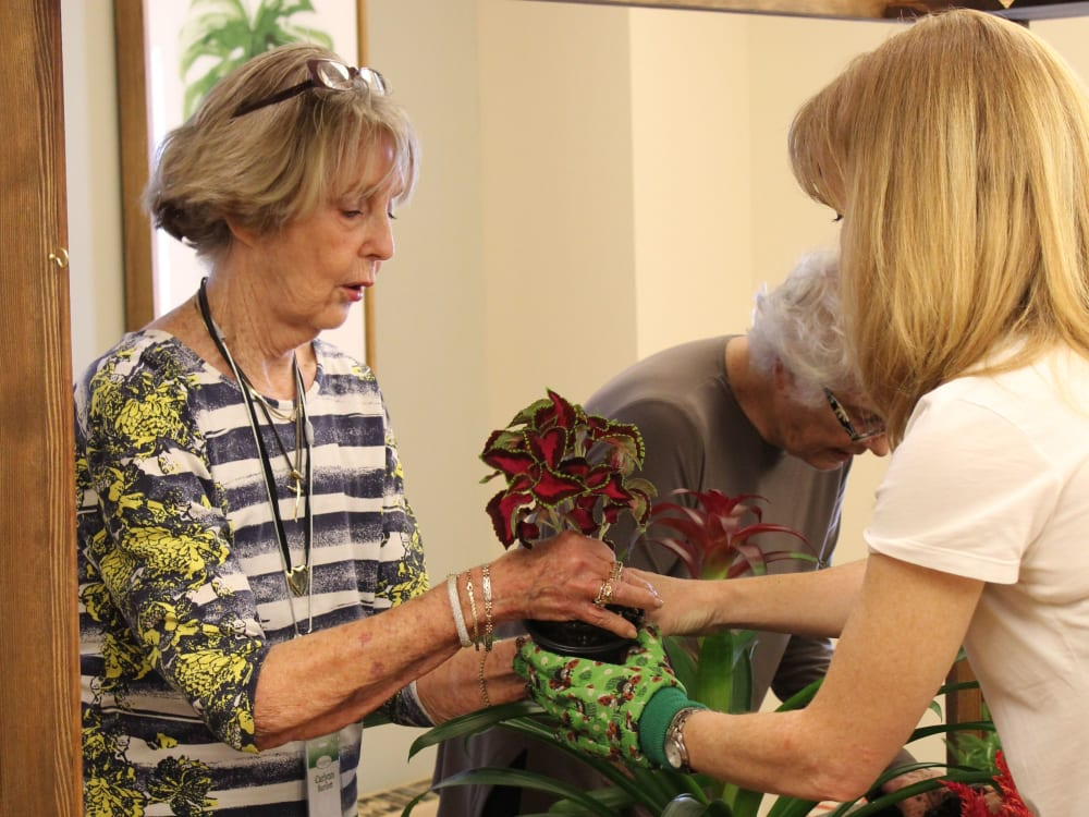 A resident and caretaker looking at sunflowers at Touchmark Central Office in Beaverton, Oregon