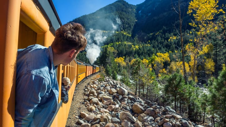Man sticking his head outside of a moving train, surrounded by forest.
