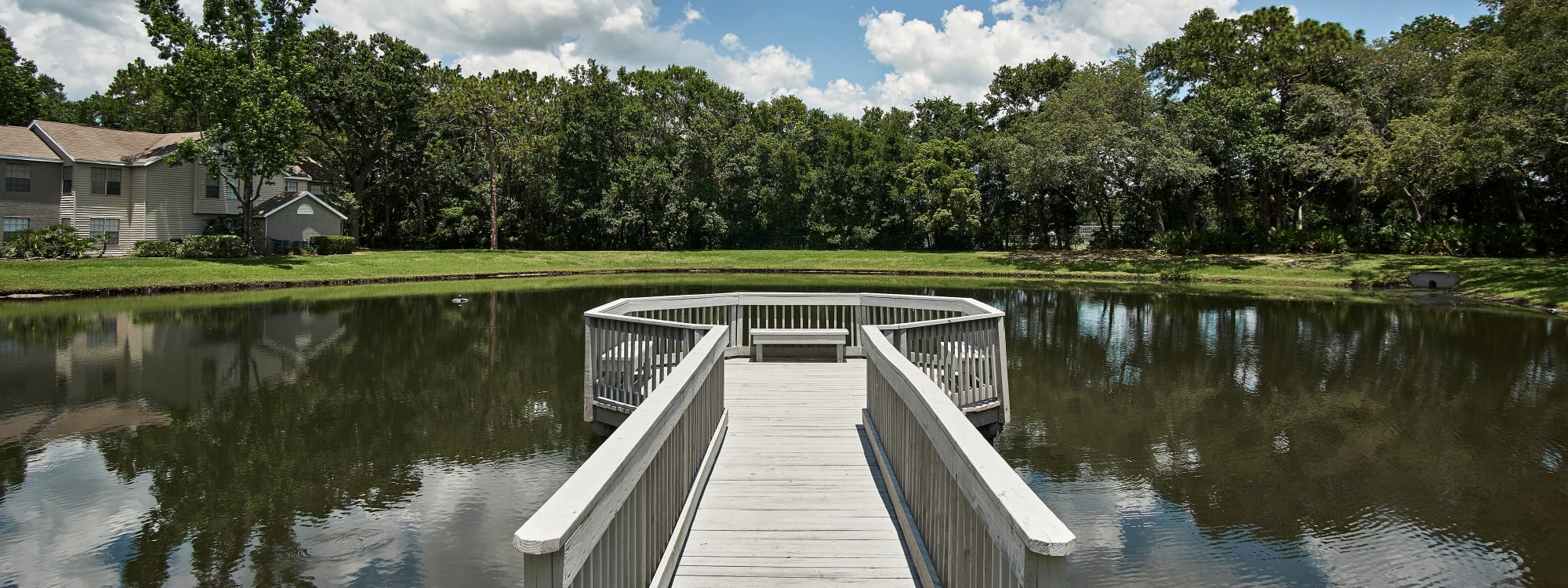 Photos of Avenue @Creekbridge in Brandon, Florida