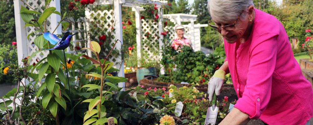 Residents gardening at The Springs at Carman Oaks in Lake Oswego, Oregon