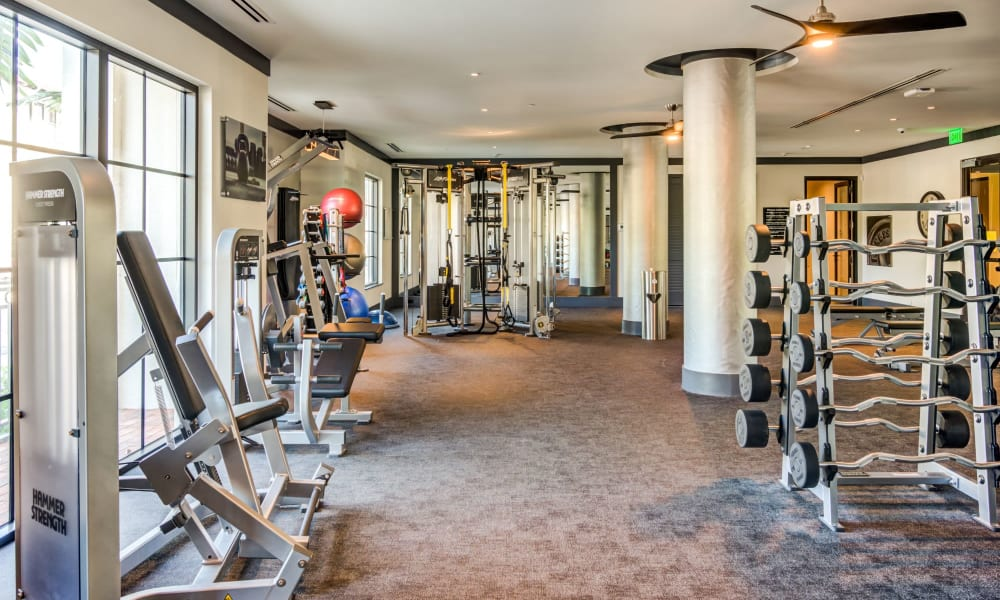 Functional fitness center area with a great view outside at 6600 Main in Miami Lakes, Florida