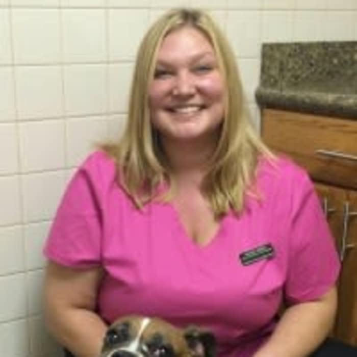 Kelsey at Arizona Avenue Animal Clinic in Chandler, AZ