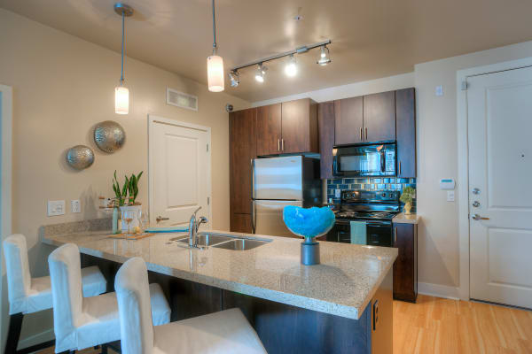 Gourmet kitchen with granite countertops and dark wood cabinetry in model home at Level at Sixteenth in Phoenix, Arizona
