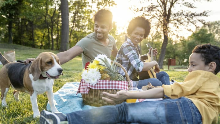 Family with their dog having a picnic in Brunswick, Georgia near The Enclave
