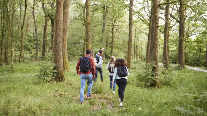 A young man leads a group of five friends during a hike.