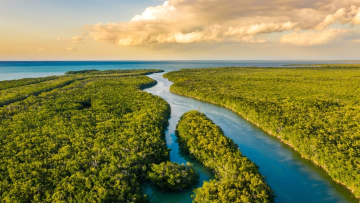 Everglades National Park at sunset