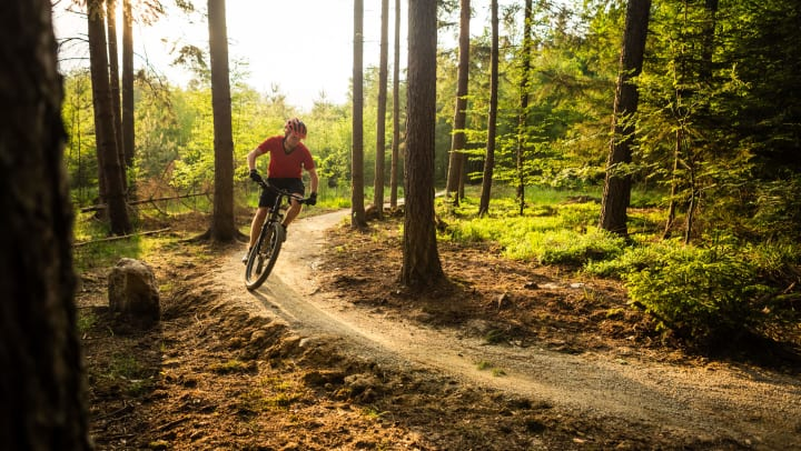 Mountain biker cycling in forest