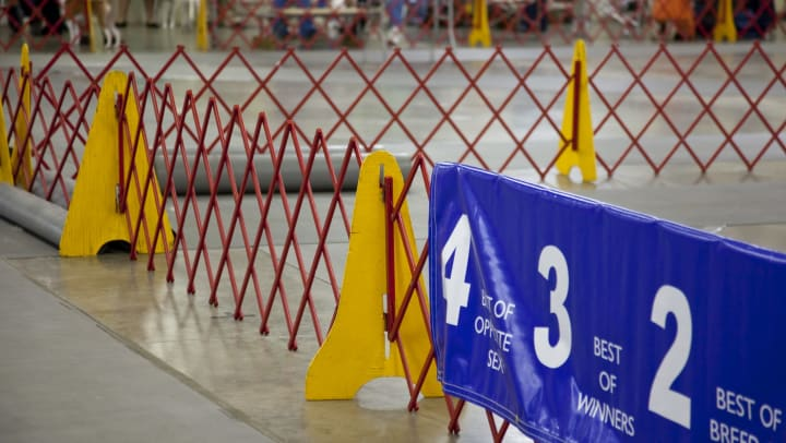 A dog show arena fencing with banner