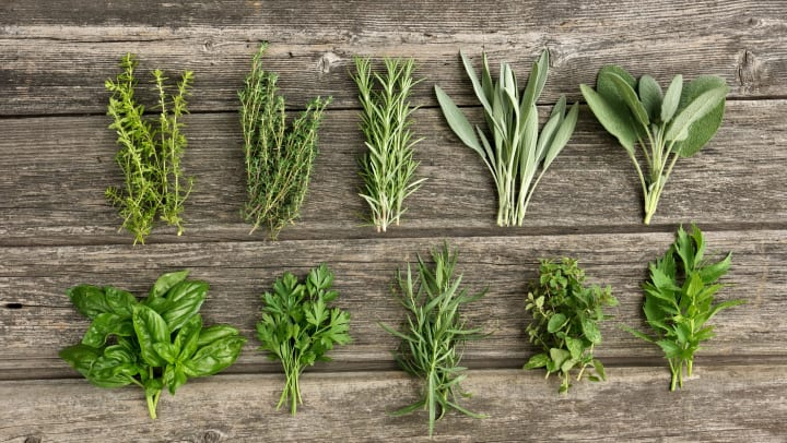 Herbs lined up on a distressed wood background.
