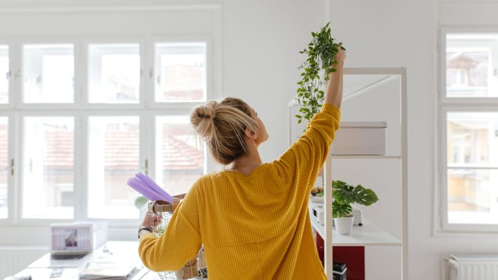 Woman in a yellow sweater holding a basket of items and reaching up to a plant on a shelf.