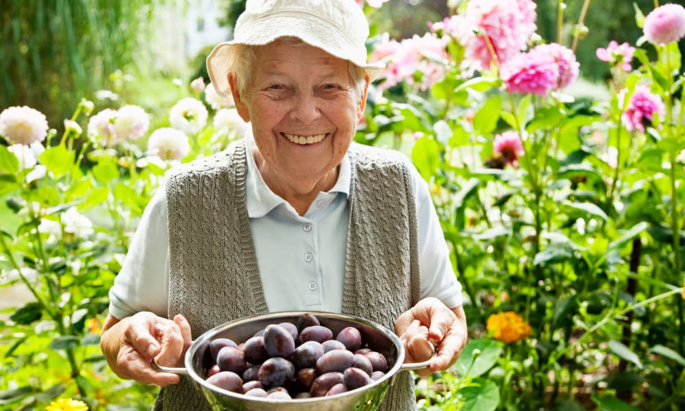 Resident with bowl of plums at The Phoenix at Lake Joy in Warner Robins, Georgia