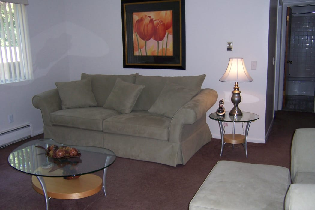 Living room at Elmwood Court Apartments in Rochester