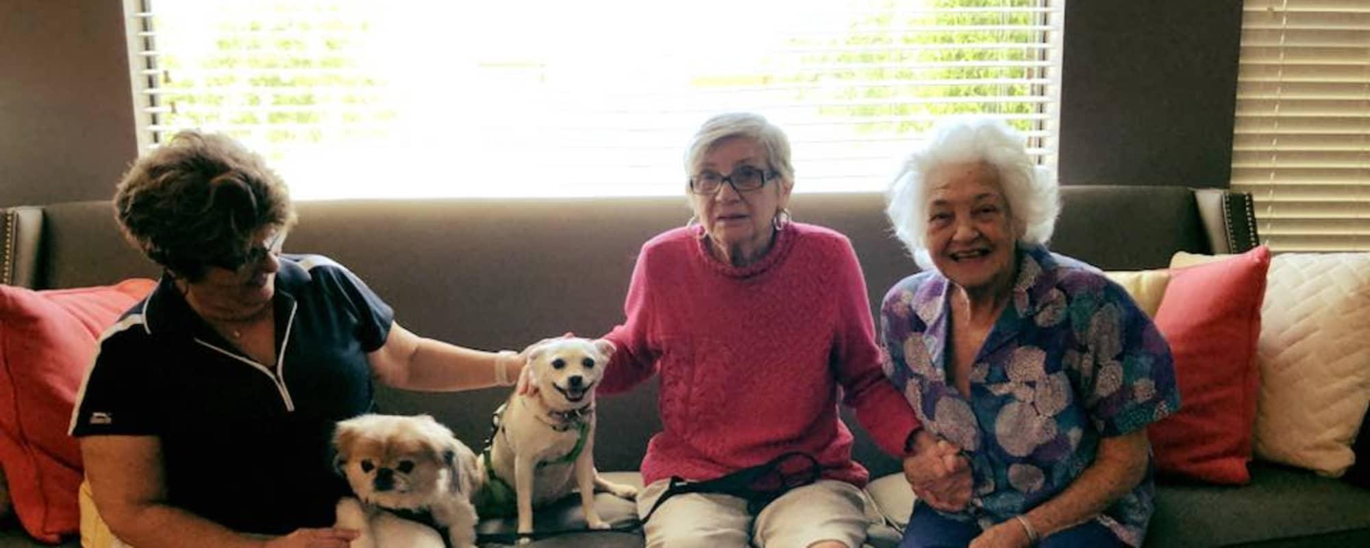Seniors petting dogs at Hacienda Del Rey in Litchfield Park, Arizona