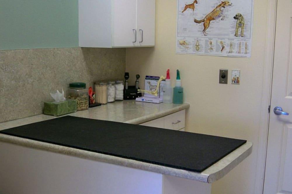 Treatment area at Red Mountain Animal Hospital in Mesa, Arizona
