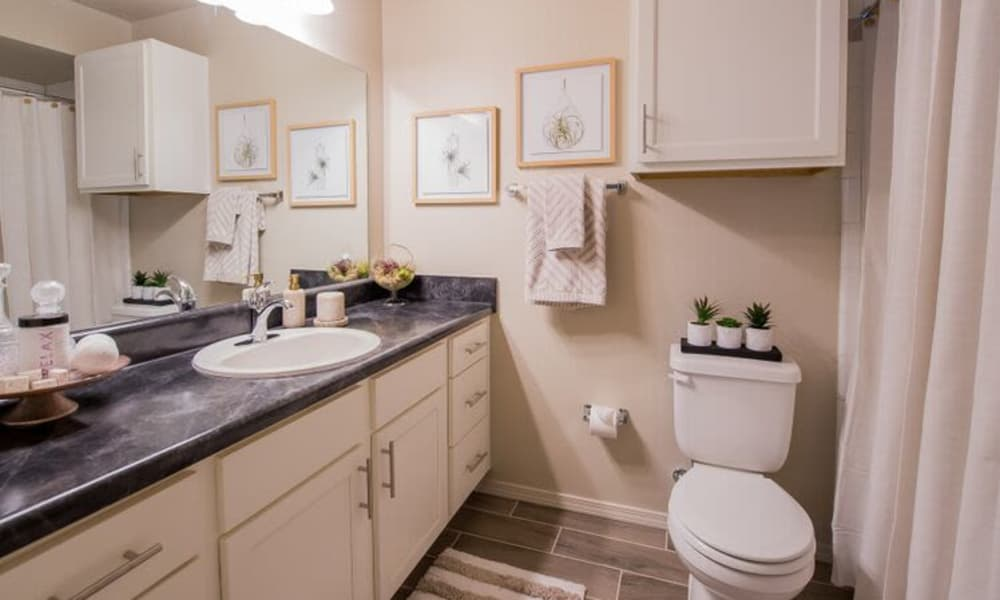 Watercress Apartments offers spacious bathrooms in Maize, Kansas