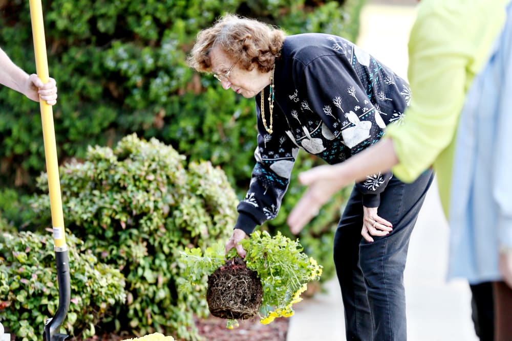 Residents gardening at Providence Assisted Living in Clarksville, Arkansas.