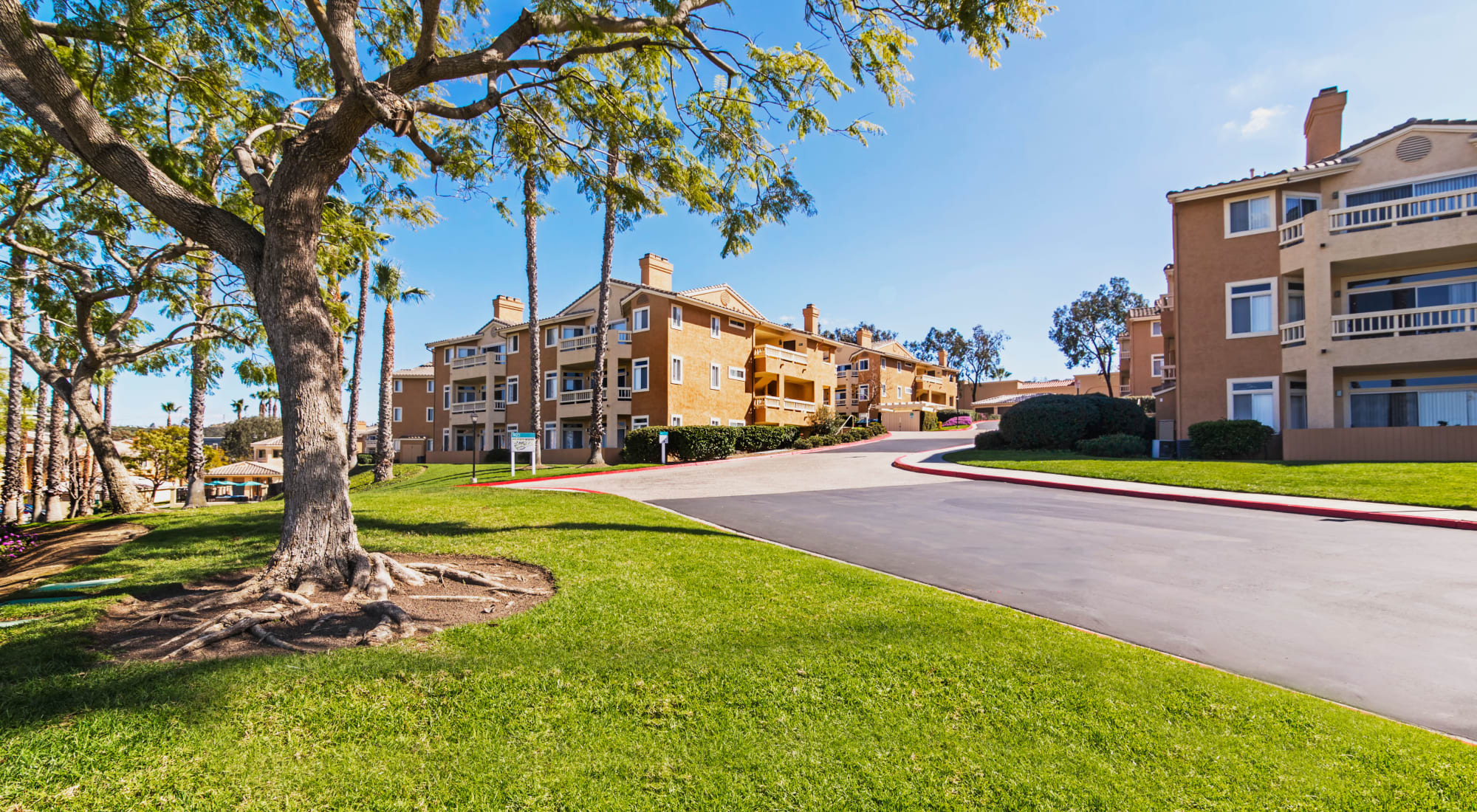 Neighborhood at Sofi Canyon Hills in San Diego, California