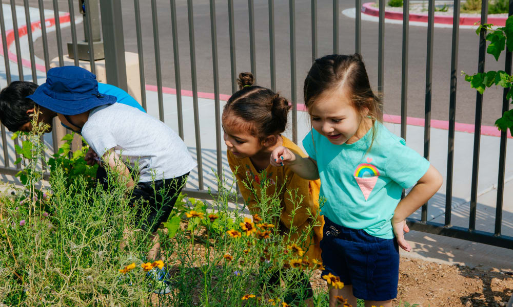 Children playing at Amaran Senior Living in Albuquerque, New Mexico.
