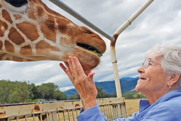 A resident from Birchwoods at Canco Assisted Living in Portland, Maine at the zoo petting a giraffe