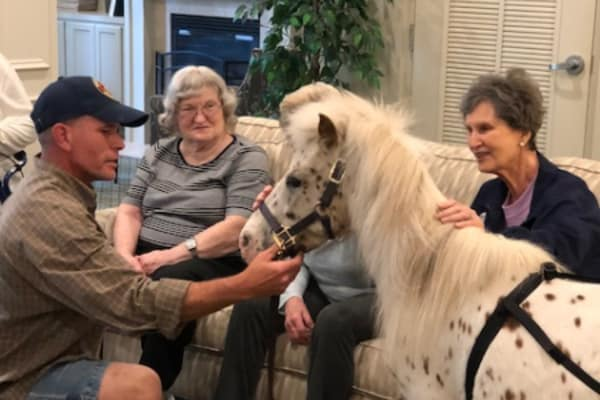 Horse visiting residents at Discovery Senior Living in Bonita Springs, Florida
